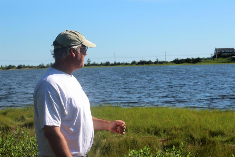 Sippican Lands Trust hopes to raise Osprey Marsh boardwalk